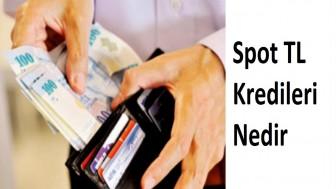 Spot TL Kredileri Nedir