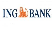 ING Bank Eximbank Kredileri