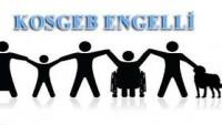 Engelli Girişimciler Hibe Krediler İçin Nereye Nasıl Başvuracak