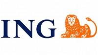 ING Bankası İhtiyaç Kredisi